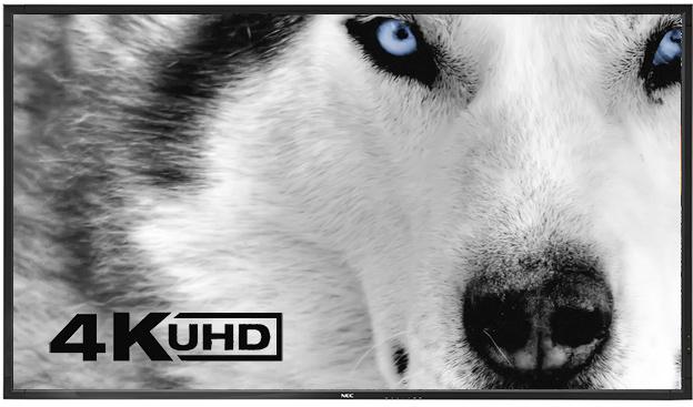4K UHD – La nuova era della Visual Experience
